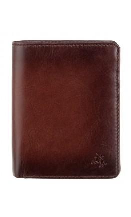 Коричневый мужской кошелек Visconti AT62 Hector c RFID (Burnish Tan)
